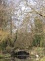 Grand Union canal, Watford - 48005939968.jpg