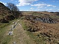 Granite tramway, Holwell Tor - geograph.org.uk - 1233076.jpg