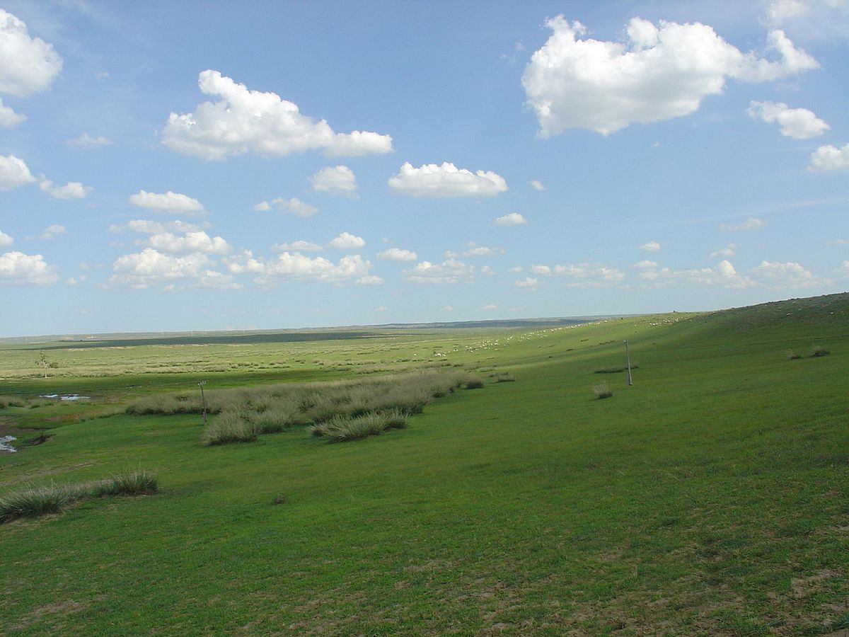 Mongolian-Manchurian grassland - Wikipedia