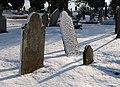 Gravestones, Torquay Cemetery - geograph.org.uk - 1660686.jpg