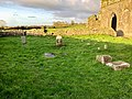 Graveyard, Hore Abbey, Caiseal, Éire - 44767969070.jpg