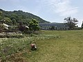 Greenhouse and lawn in Innoshima Flower Center 4.jpg