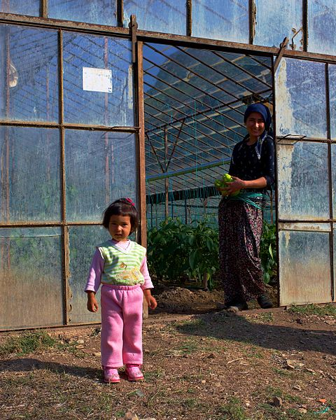 File:Greenhouse worker Adrasan.jpg