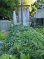 Grob Franciszka Hynka.JPG