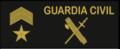 Guarcivi10.png