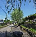 Hachimancho Yanagimachi, Gujo, Gifu Prefecture 501-4214, Japan - panoramio (11).jpg