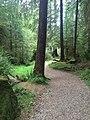 Haida Gwaii (26647590933).jpg