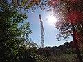 Hamm, Germany - panoramio (2117).jpg