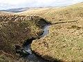 Hapturnell Burn - geograph.org.uk - 702852.jpg