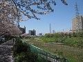 Hara Nagoya 0925.JPG