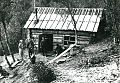 Harinen hut.jpg