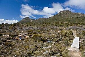 Hartz Mountains (Tasmania) - Image: Hartz Mountain and Mt Snowy