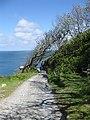 Heading down the beach road - geograph.org.uk - 1341555.jpg