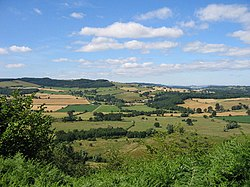 Herefordshire Trail leading to Wapley Hillfort - geograph.org.uk - 60220.jpg