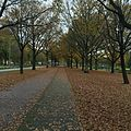 Herfst in Veendam 04.jpg