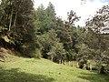Hermoso Paisaje - panoramio.jpg