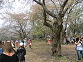 High Park, Toronto - Laslovarga (31).JPG