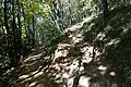 Hike to Talabar & Col du Pré Vernet (45052570484).jpg