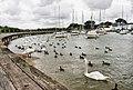 Hillhead Harbour - geograph.org.uk - 1418105.jpg