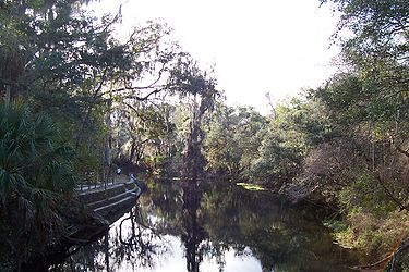 Hillsborough River State Park 5.jpg