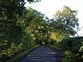 Hillybarn Road - geograph.org.uk - 1460131.jpg