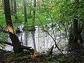 Hohenfinow-2001-03.jpg