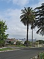 Hollywood sign from Hobart.jpg