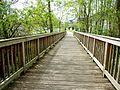 Holzbrücke an der Lohe Richtung Süden.jpg