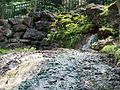 Hot Springs NP Hot Spring.JPG