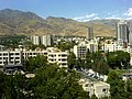 Hot Summer days ( 40 C - 104 F ),Tehran - panoramio - Behrooz Rezvani (8).jpg