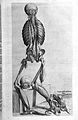 "Human muscles ""Compendiosa..."", T. Geminus, 1553 Wellcome L0002883.jpg"