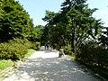 Hyehwa fall 2014 107 (Changgyeonggung).JPG