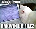 I'm in ur wiki rmovin ur filez.jpg