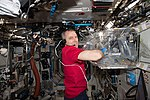 ISS-55 Drew Feustel conducts science operations inside the Destiny lab.jpg