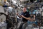 ISS-59 David Saint-Jacques works inside the Destiny lab (1).jpg