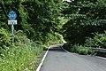 Ibaraki prefectural road route 248 (Mt. Yamizo-san park line) in Kaminomiya, Daigo town 2.jpg