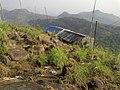 Ilaveezhapoonjira - panoramio (7).jpg