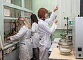 In the Lab for Chemistry of Plant Polymers.jpg