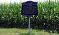 Indiana Caesarean section marker.png