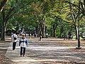 Inokashira Park.jpg