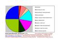 Isanti County Pie Chart New Wiki Version.pdf