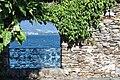 Isole di Brissago Botanical Park.jpg