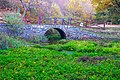 Izvor reke Moravice 03.jpg