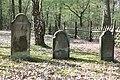 Jüdischer Friedhof Hoyerhagen 20090413 043.JPG