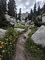 Jacobs Ladder Trail to Lone Peak.jpg