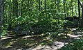 Jake's Rocks Overlook Trail - 20200806 - 09.jpg