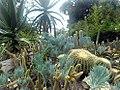 Jardim Botânico (Botanical Garden) (3454578457).jpg