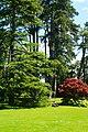 Jardin Botanique 06.jpg