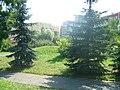 Jedno z licznych lubińskich osiedli - panoramio.jpg