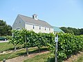 Jewell Towne Vineyards, Amesbury MA.jpg